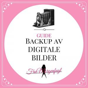 Guide til backup av bilder