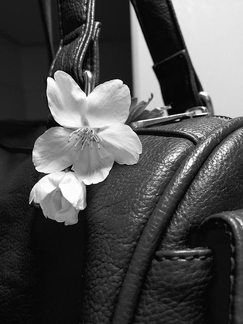 purse-709575_640