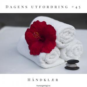 Dagens utfordring #45- Håndklær