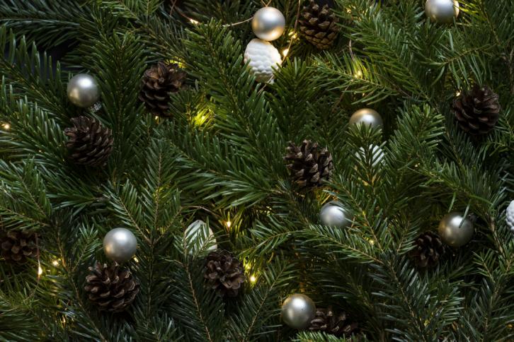 Dagens utfordring #7: Ut med juletreet