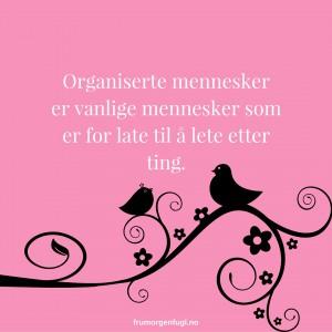 Organiserte mennesker er vanlige mennesker som er for late til å lete etter ting.